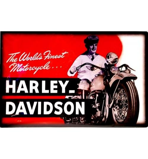 Quadro Retrô Harley Davidson